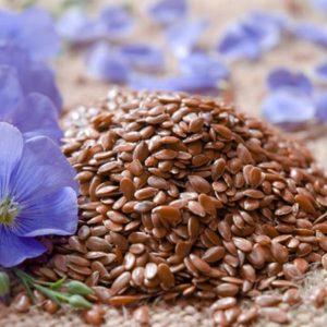 Plant Seeds & Bulbs